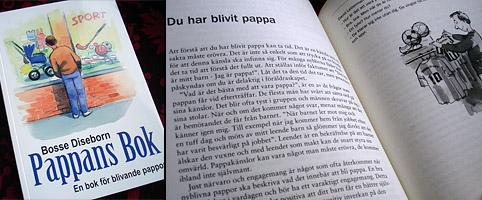 Engqvist kritisk mot s i ny bok