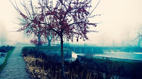 Dimman låg som ett tjockt täcke över staden.