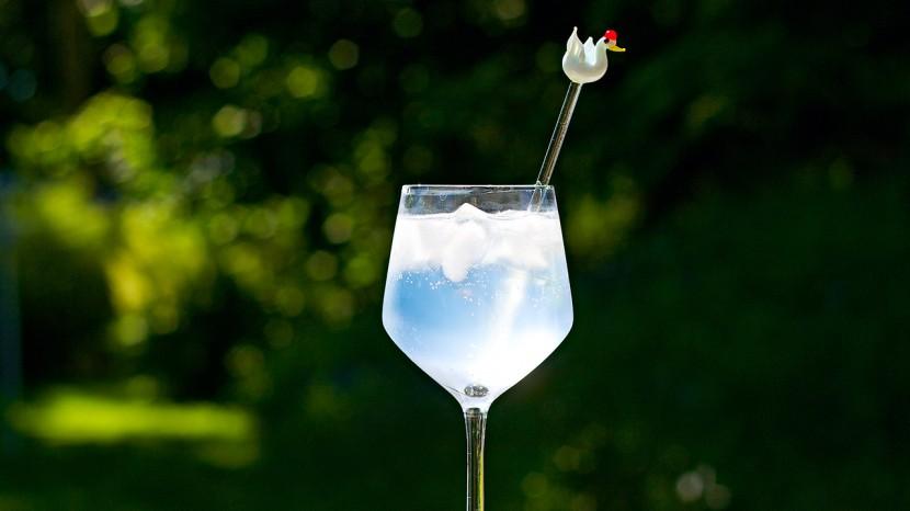 En tröstande Gin & tonic.