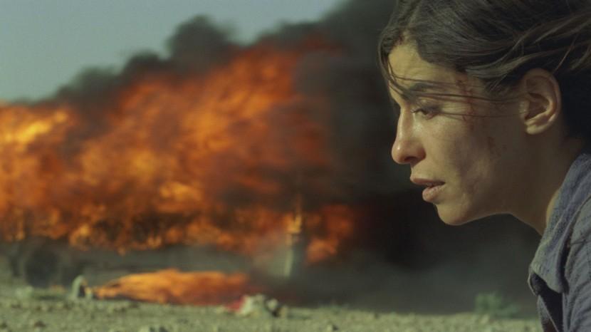 Fantastiska Nawals hemlighet är den bästa film jag har sett under 2013.